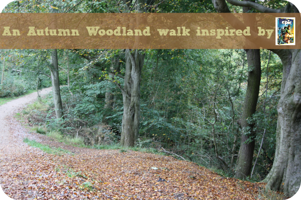Epic woodland walk