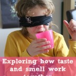 Exploring sense of smell and taste