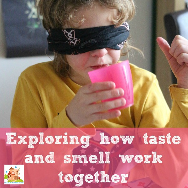 smell-and-taste-