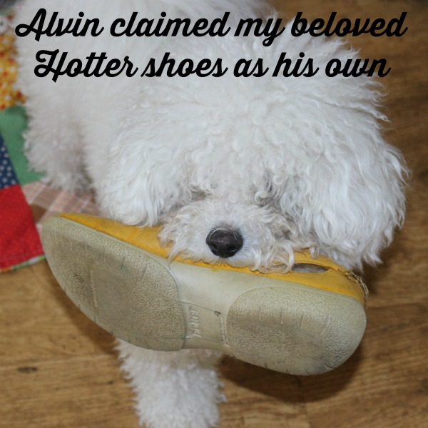 Alvin claimed my hotter shoes
