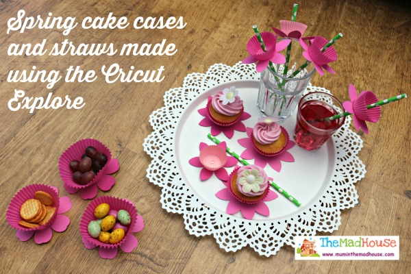 Spring cake cases and straws