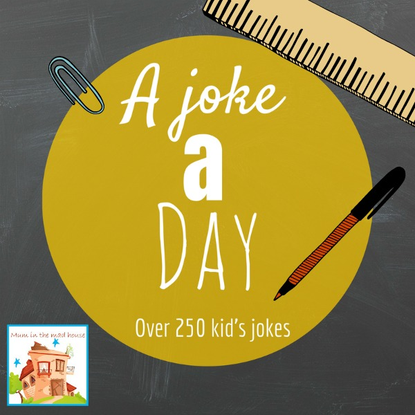 a joke a day  kids lunch box jokes