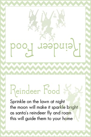Reindeer Food Light Green Chevron