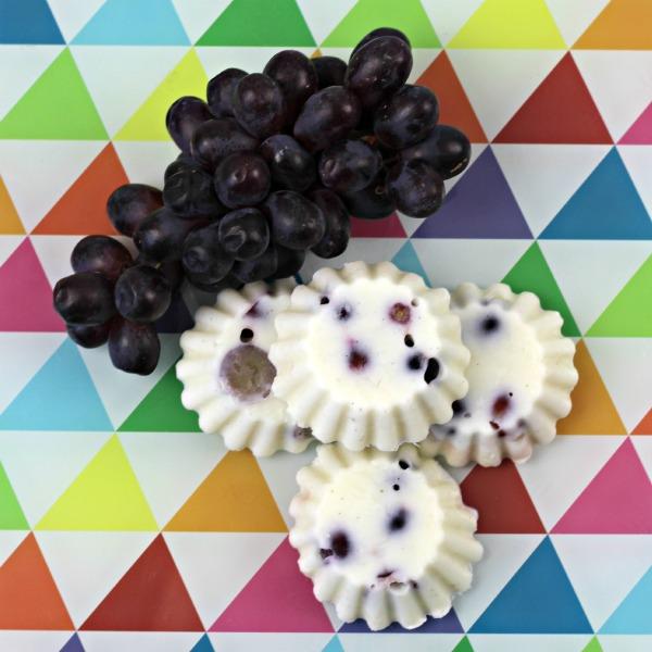 Frozen Fruity Yoghurt Bites 4