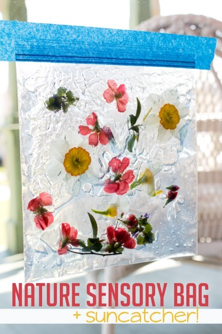 nature-sensory-bag-suncatcher-20150426-10-433x650