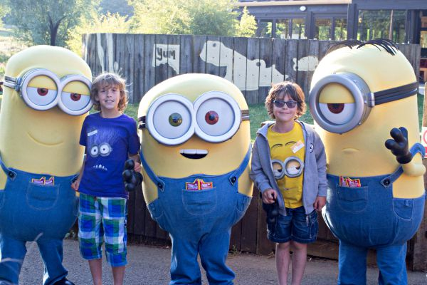 minis and minions