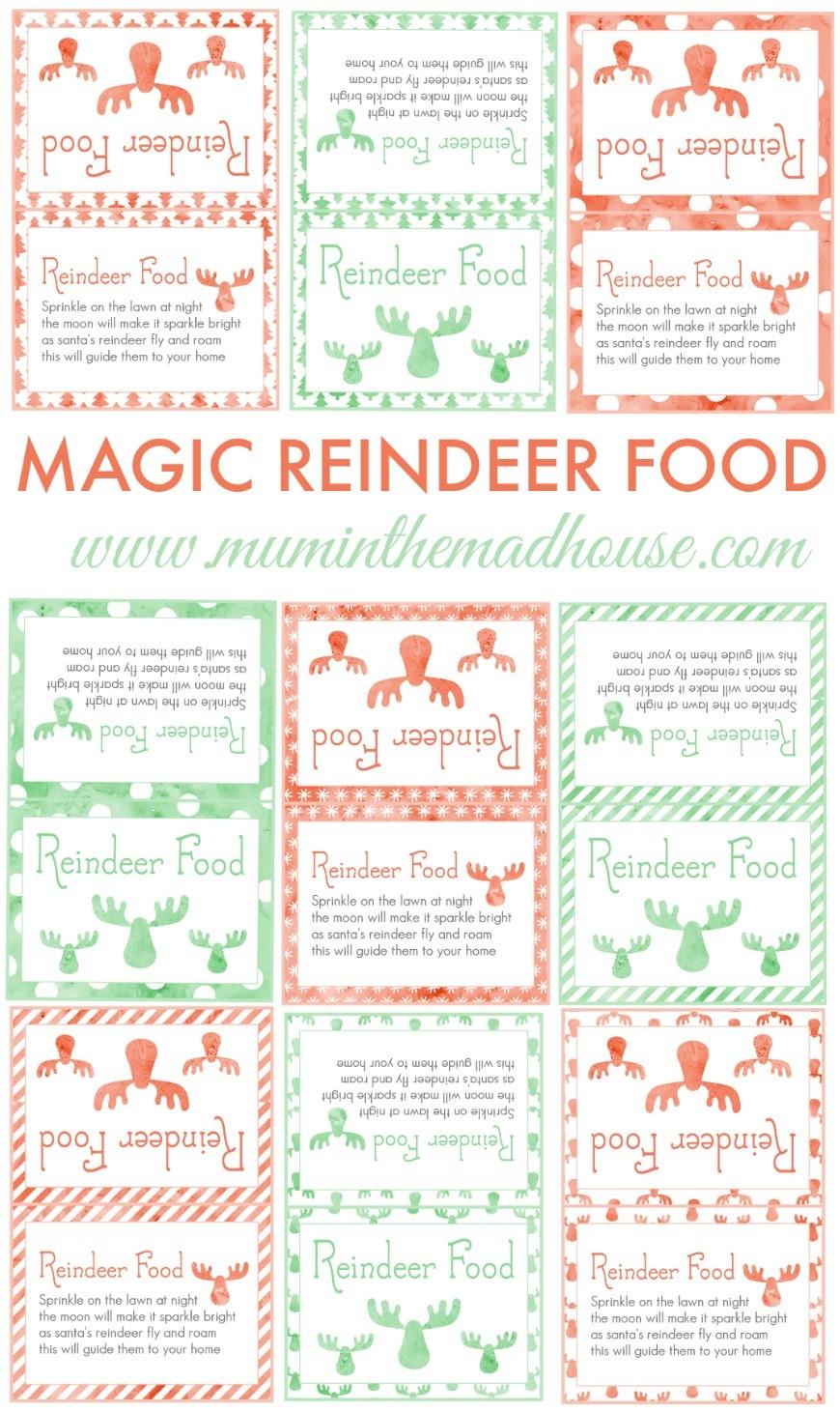 DIY Magic Reindeer Food - Mum In The Madhouse