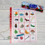 Go on a Scavenger Hunt with Free Printable – Summer of Fun