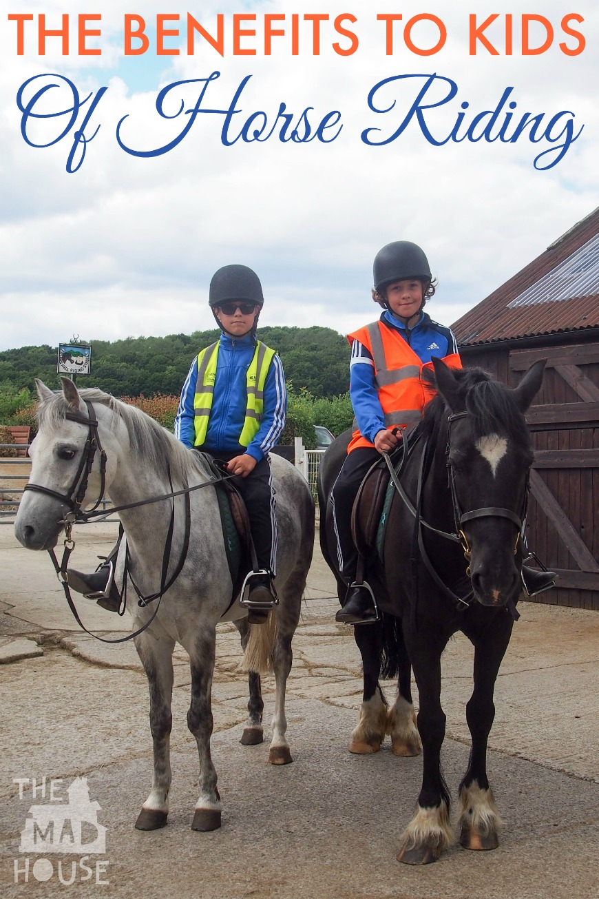 a personal experience with riding a horse One rider's helmet story by vanessa: i am an experienced rider i fell during an   i fell off after my new horse panicked and bolted i believe i hit.