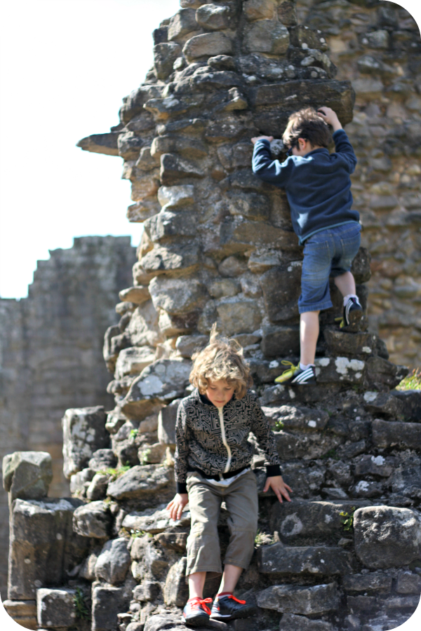 climbing fountains