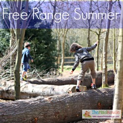 free range summer