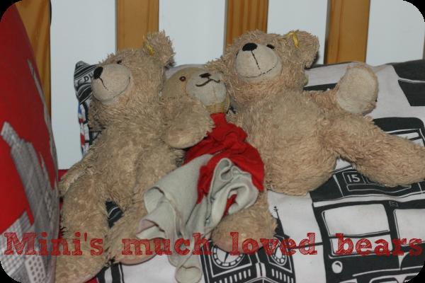 mini's much loved bears