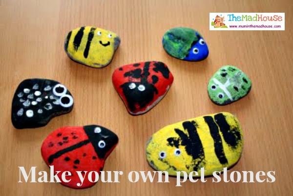 pet stones