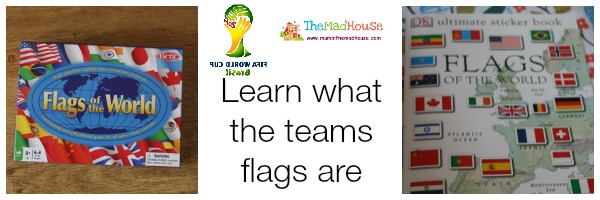learning the teams flags