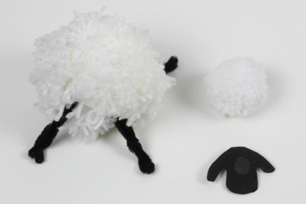 pompom sheep 4