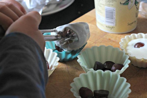 Frozen Fruity Yoghurt Bites  2