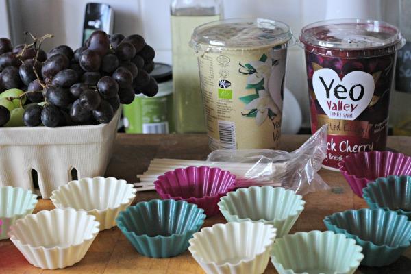 Frozen Fruity Yoghurt Bites ingredients