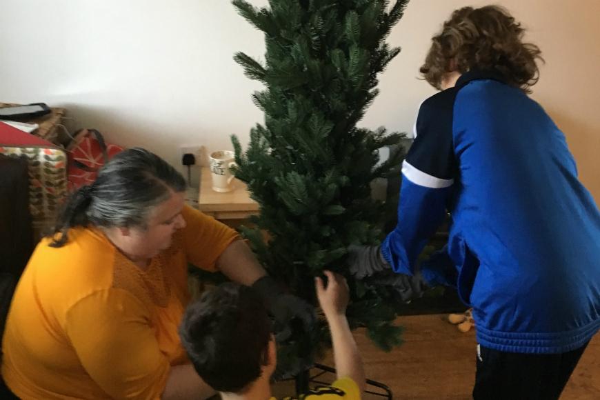 put up the tree