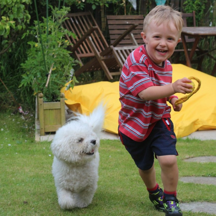 5 reasons why every family needs a dog. #3 had me in stitches - so funny!