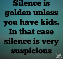 "Who ever said that ""Silence is Golden"" must never have had children. Silence in my house means that the boys must be up to something."