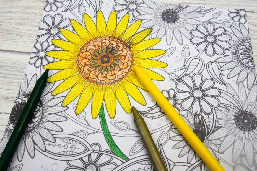 Sunflower Colouring Page Mum In The Madhouse