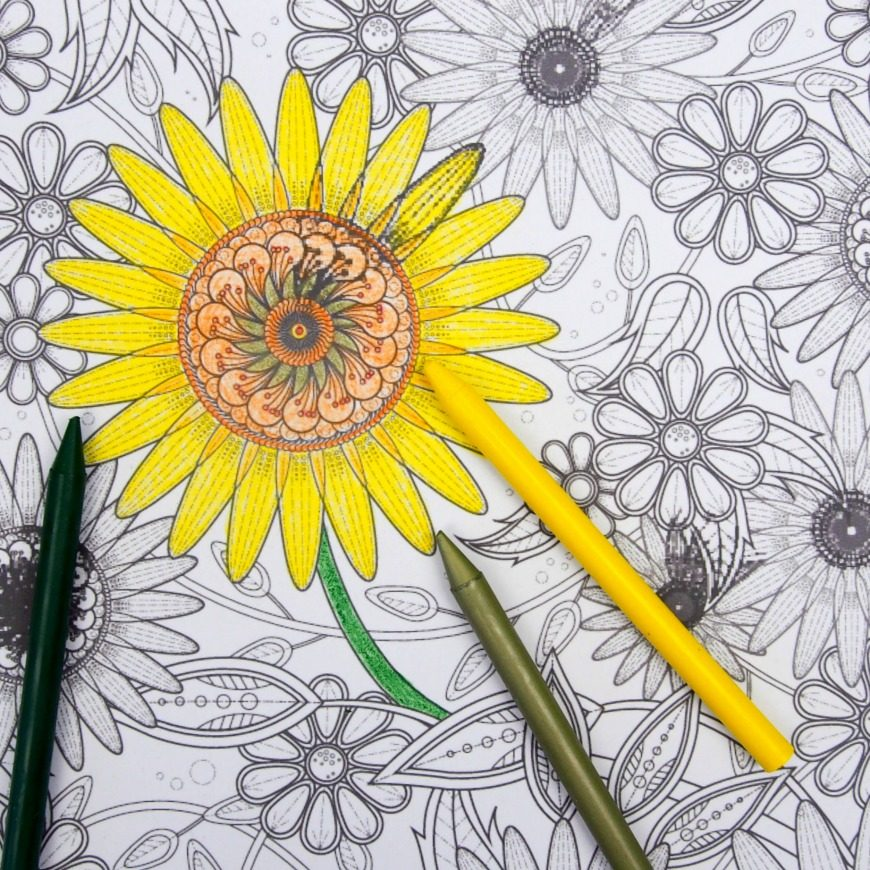 Celebrate summer days with this fab Sunflower colouring page for adults. Perfect for Enjoy the beauty of sunflowers with this free printable.