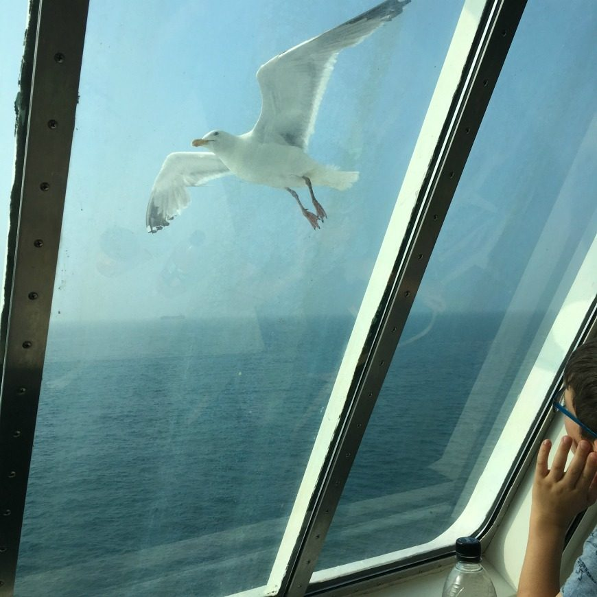 Tips for ferry Crossings with Kids
