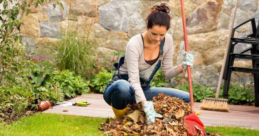 Top Outdoor Tasks to Tick off Your To-Do List This Autumn