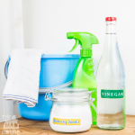 Green Cleaning Tips and Polti Moppy Review