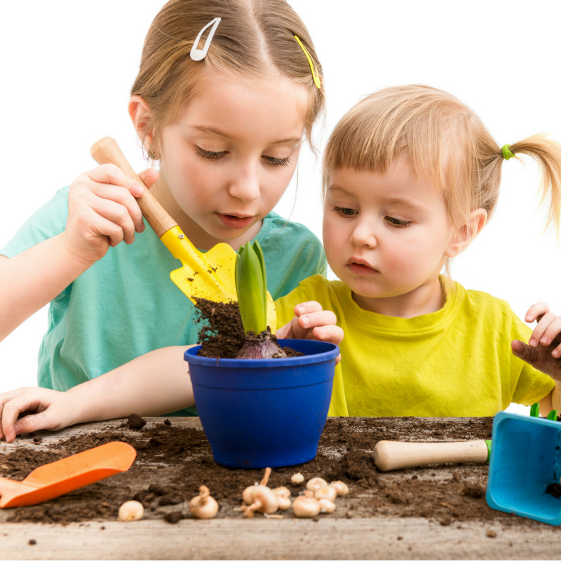 Gardening is Fun For the Entire Family