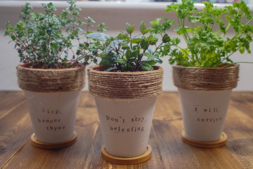 DIY Painted Terracotta Plant Pots - with Herb Puns - Mum In