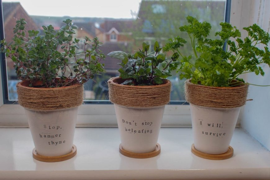 DIY herb pin planters homemade gifts
