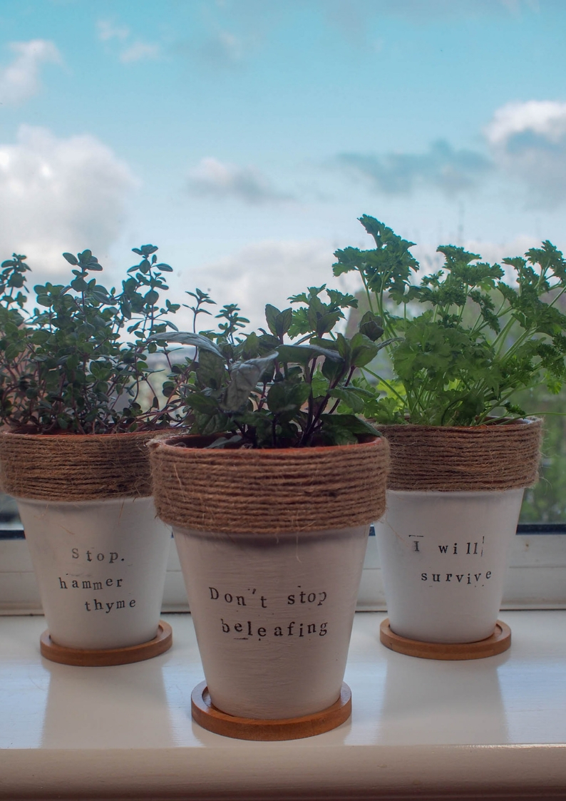 These Painted Terracotta Plant Pots with herb puns are a simple but effective craft upcycle perfect for any foodie or gardener.