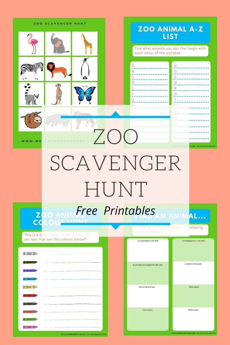 These free printable Zoo Scavenger Hunt games are perfect for kids of all ages. Simply print and bring with you to the zoo.