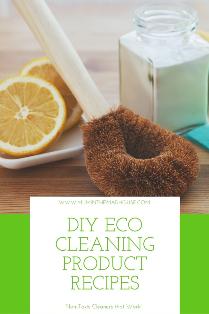 Lemon, Loofah and Bicarb natural cleaning products