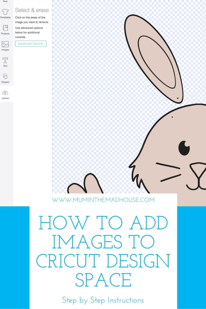 Follow our step by step detailed tutorial on how to upload your own images to Cricut Design Space. We talk you through file types and how to tell if you can use them.