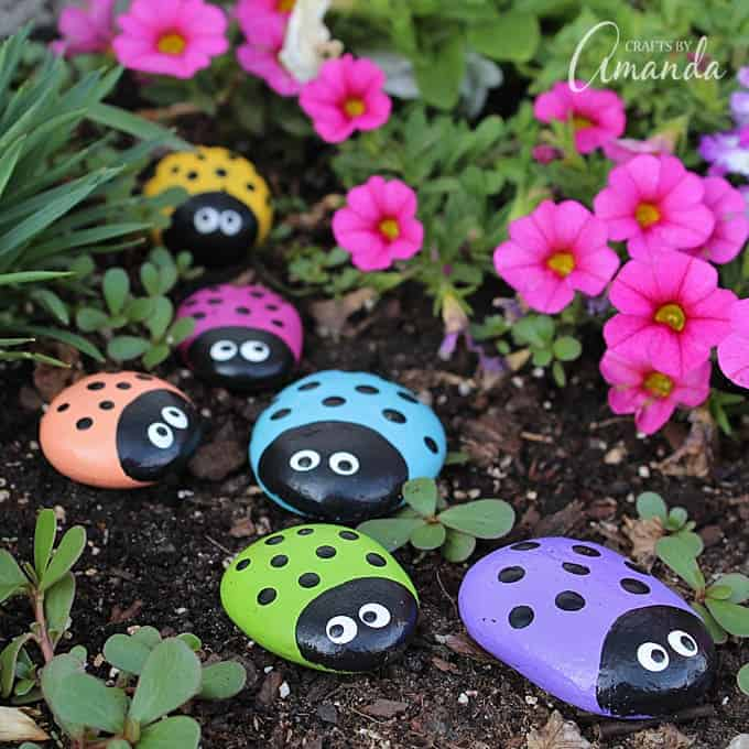 Ladybird rocks